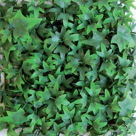 Siepe artificiale edera L 0.5 x H 1 m