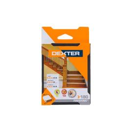 Cuneo per pomiciatura per legno / vernice DEXTER 100 x 125000 x 10 mm