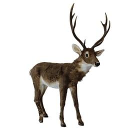 Decorazione Cervo movimento testa 116x168cm in resina L 116 x H 168 x P 29 cm