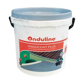 Membrana di poliuretano Oducoat Plus 5 kg