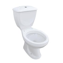 Vaso WC monoblocco Viola