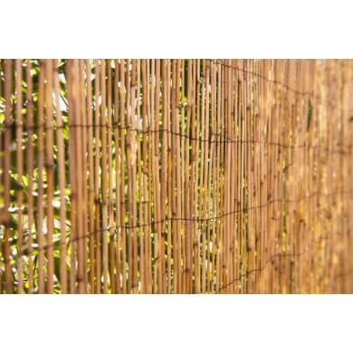 Arella bambù L 3 x H 1.5 m