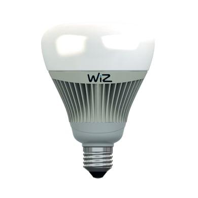Lampadina LED E27, Globo, Argentato, Colore cangiante, 15W=1055LM (equiv 75 W), 360° , WIZ