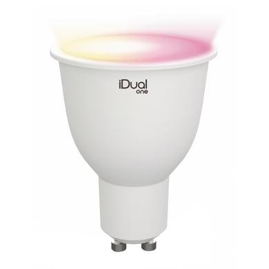 Lampadina LED GU10 faretto colore cangiante 5W = 330LM (equiv 40W) 100° LEXMAN
