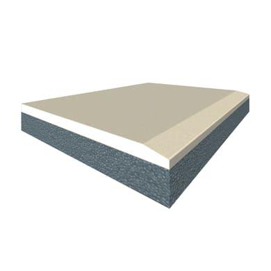 Lastra cartongesso Duplexlm 200 x 90 cm, Sp 42.5 mm