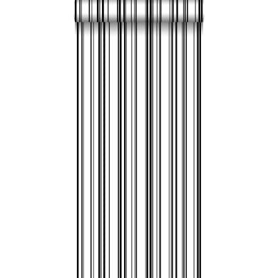 Carta da parati Righe fini bianco e nero, 53 cm x 10.05 m