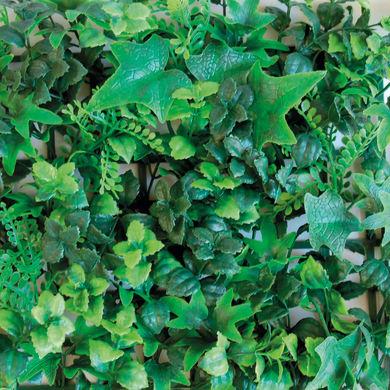 Parete verde artificiale convolvoli