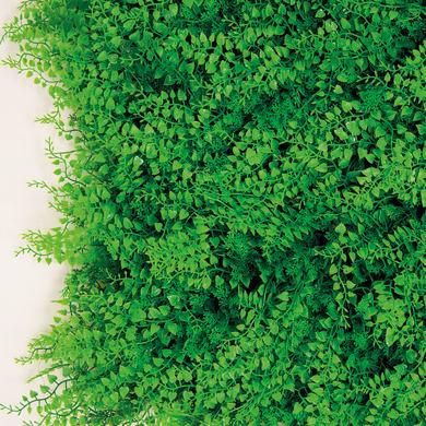 Parete verde artificiale felce