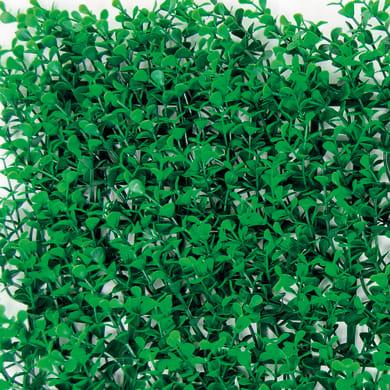 Parete verde artificiale bosso