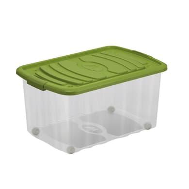 Contenitore L 59 x H 30 x P 39 cm trasparente e verde