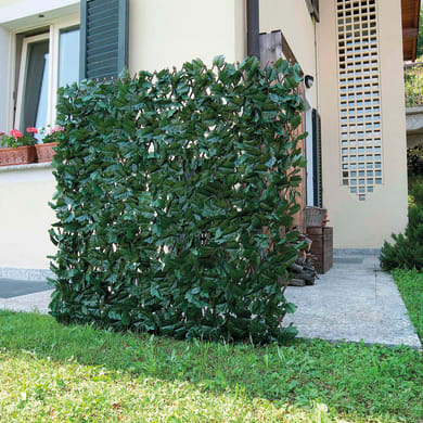 Parete verde artificiale edera