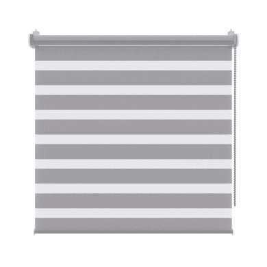 Tenda a rullo Orleans grigio chiaro 55x160 cm