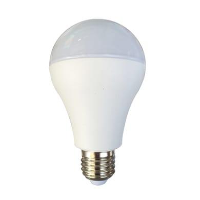 Lampadina LED E27 standard bianco freddo 23W = 2452LM (equiv 150W) 150° LEXMAN
