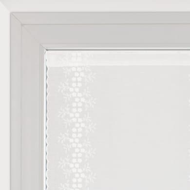 Tendina vetro Aida naturale tunnel 60 x 160 cm