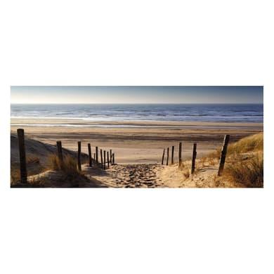 Quadro in vetro Beach With Dunes 125x50 cm
