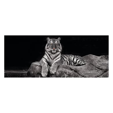 Quadro in vetro Tiger 125x50 cm