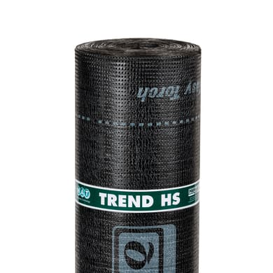 Membrana impermeabilizzante POLYGLASS Trend 4500 g/m³ 1 x 10 m verde -5 gradi