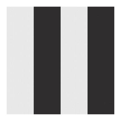 Tessuto Esterni stripe nero 160 cm