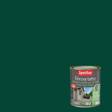 Smalto per legno da esterno base acqua SYNTILOR Rinnova Tutto verde 2.5 L