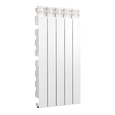 Radiatore acqua calda Klassic 800/100 in alluminio 5 elementi interasse 80 cm