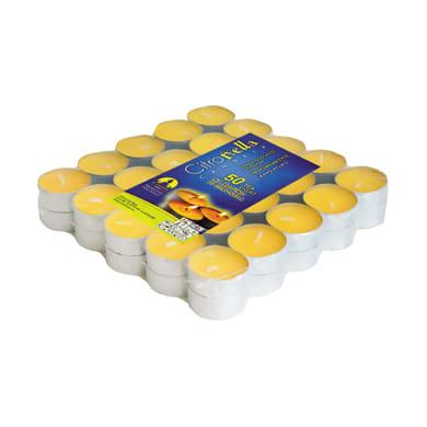 Candela anti-zanzara al profumo di citronella confezione da 50 pezzi