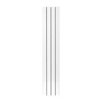 Radiatore acqua calda PRODIGE Superior in alluminio 4 elementi interasse 160 cm