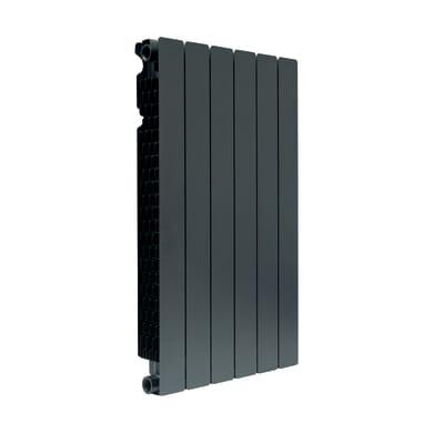 Radiatore acqua calda PRODIGE Modern in alluminio 6 elementi interasse 80 cm