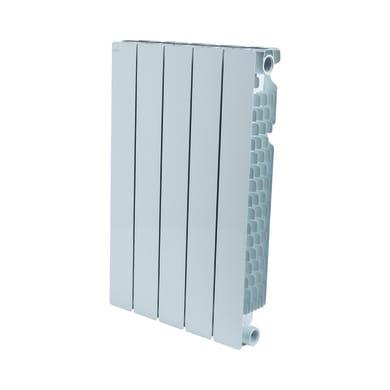 Radiatore acqua calda PRODIGE BY FONDITAL Modern in alluminio 5 elementi interasse 60 cm