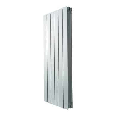 Radiatore acqua calda PRODIGE Superior in alluminio 6 elementi interasse 120 cm