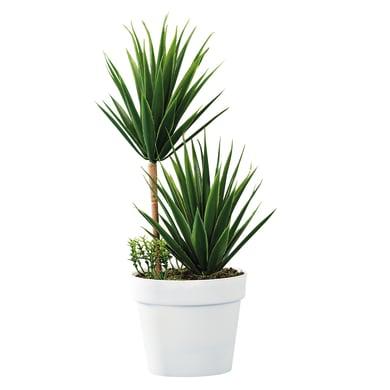 Pianta artificiale in vaso H 28.5 cm