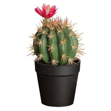 Vaso in plastica cactus 11X20