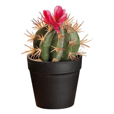 Vaso in plastica cactus 8.5X17 L 8.5 x H 17 cm