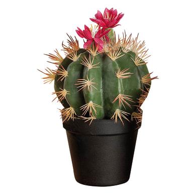 Vaso in plastica cactus 20X27