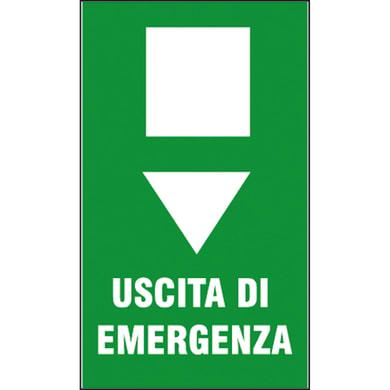 Cartello segnaletico Uscita di emergenza vinile 20 x 30 cm