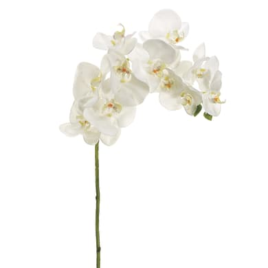 Fiore artificiale ramo di Orchidea H 69 cm