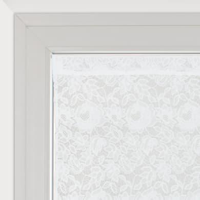Tendina vetro Cleopatra bianco tunnel 60 x 150 cm