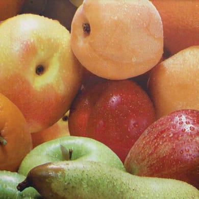 Tovaglia INSPIRE Frutta multicolore 120x160 cm