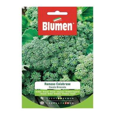 Seme per orto Broccolo