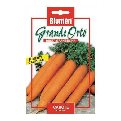 Seme per orto carota lunga
