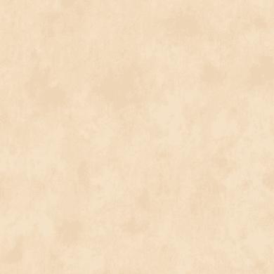 Carta da parati Duplex Nuvolato beige