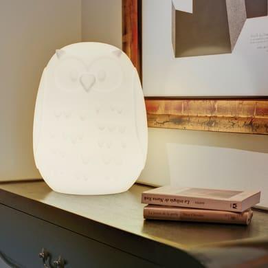 Lampada da esterno Gufo H40cm, in plastica, luce bianco, E27 IP65 NEWGARDEN