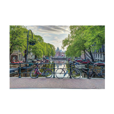 Poster Assaf frank amsterdam 91.5x61 cm