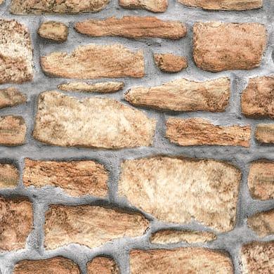 Pellicola Muro beige 0.45x2 m