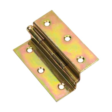 Cerniera piana 50 x 60 mm, acciaio, 2 pezzi