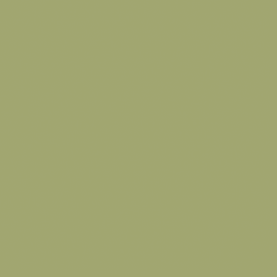 Pittura lavagna bamboo 0.13 L