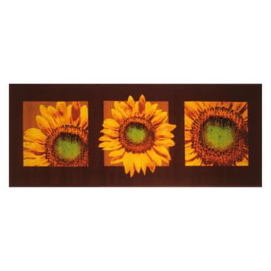 Tappeto cucina antiscivolo Girasole , marrone, 57x190 cm