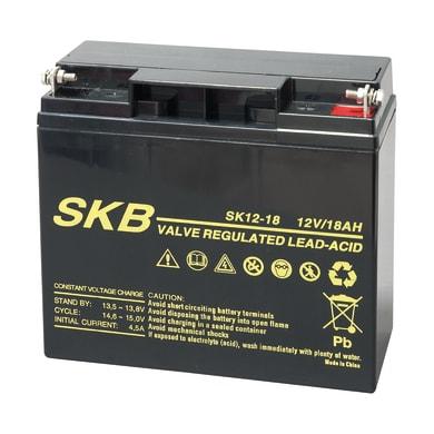Batteria per allarme 12 V 18 Ah