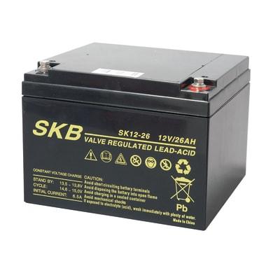 Batteria per allarme 12 V 26 Ah