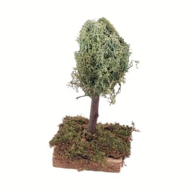 Albero di lichene H 12 cm