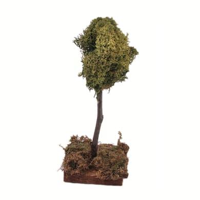 Albero di lichene H 15 cm